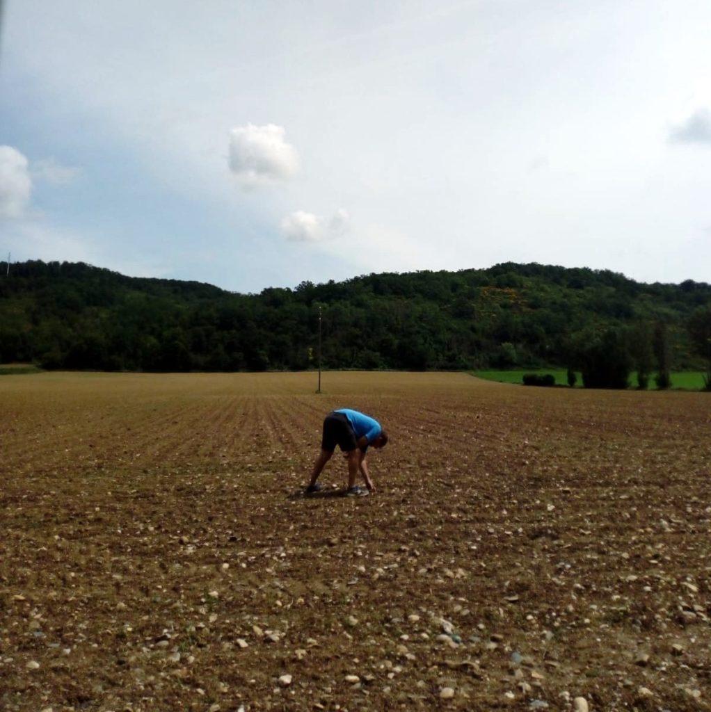 agri_soin_terre